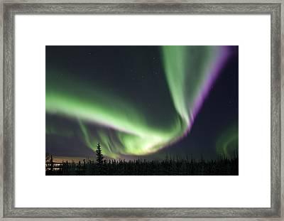Super Aurora Framed Print