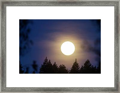 Super Full Moon Framed Print
