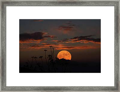 Super Moon And Silhouettes Framed Print