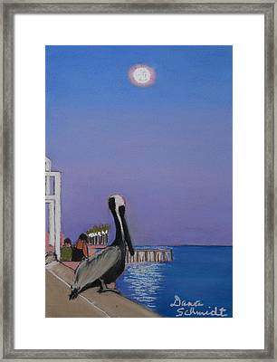 Super Moon Over St. Pete Framed Print