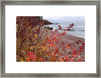Superior November Color Framed Print