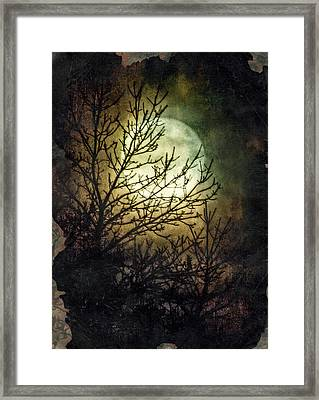 Supermoon At Retzer Nature Center- Wisconsin Framed Print