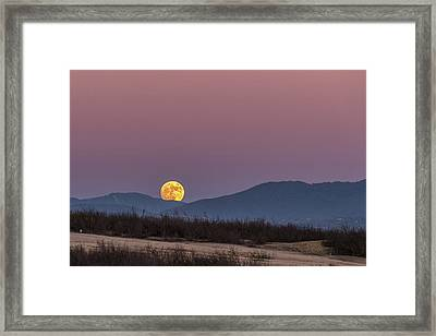 Supermoon November 2016 Framed Print by Peter Tellone