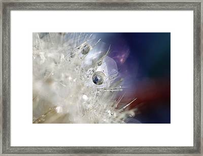 Supernova Framed Print by Amy Tyler