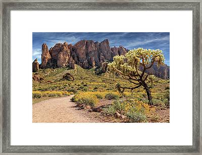 Framed Print featuring the photograph Superstition Mountain Cholla by James Eddy