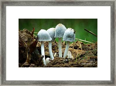 Support Group Framed Print by Julia Hassett