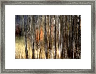 Support Framed Print by Robert Shahbazi