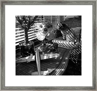 Surburban Safari With Toto Framed Print