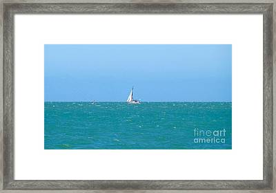 Surf And Sail The Sea Framed Print