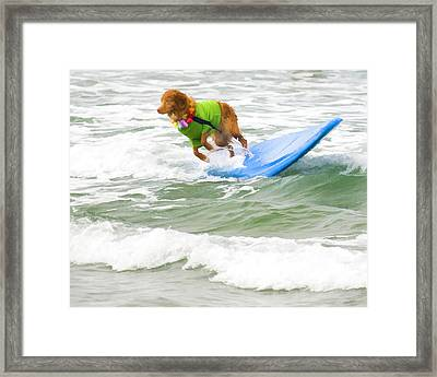 Surf Dog - Outta Here Framed Print by Waterdancer