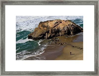 Surf Fishing At Ocean Beach Framed Print