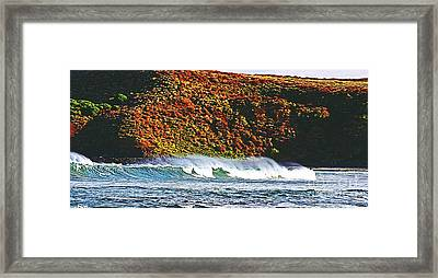 Surfing The Island Framed Print