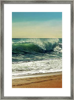 Surf's Up Framed Print by Laura Fasulo