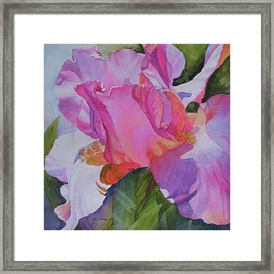 Surprise Framed Print by H S Craig