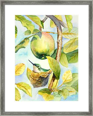 Surprise In The Apple Tree Framed Print