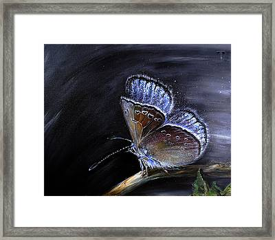 Surreal Common Blue Framed Print by Tanya Byrd