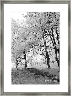 Surreal Infrared Black White Nature Trees - Haunting Black White Trees Nature Infrared Framed Print by Kathy Fornal