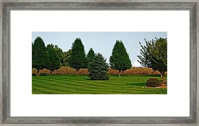 Surreal Lawnscape Framed Print by Murray Bloom