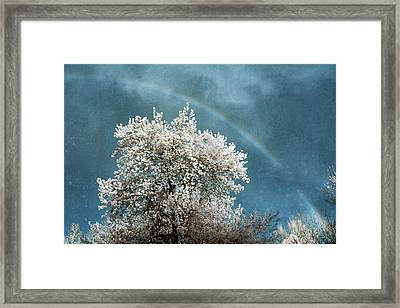 Surreal Sky Framed Print by James Barber