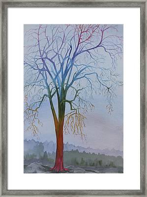 Surreal Tree No. 3 Framed Print by Debbie Homewood