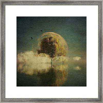 Surrealistic Landscape With Yellow Birch And Full Moon Framed Print