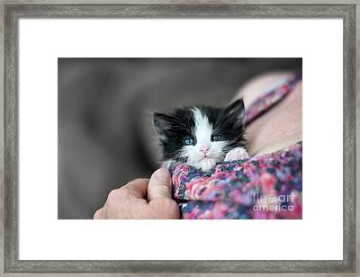 Surrogate Mom Framed Print