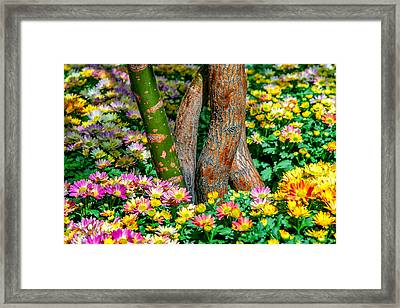 Surrounded Framed Print by Az Jackson