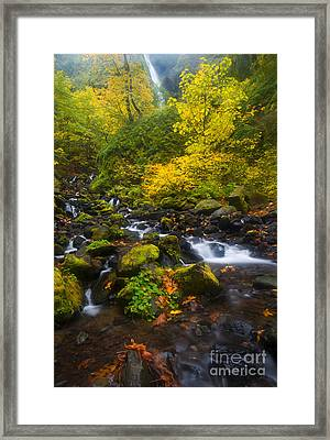 Surrounded By Fall Color Framed Print