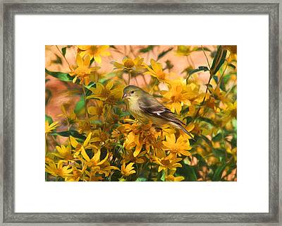 Surrounded By Gold 2 Framed Print by Donna Kennedy