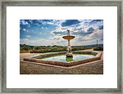Surrounded By Magic Framed Print