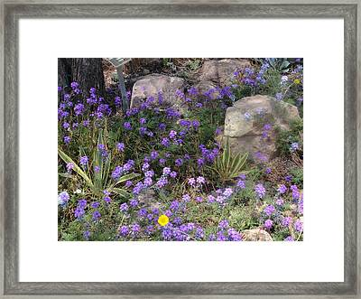 Surrounded By Purple Flowers Framed Print