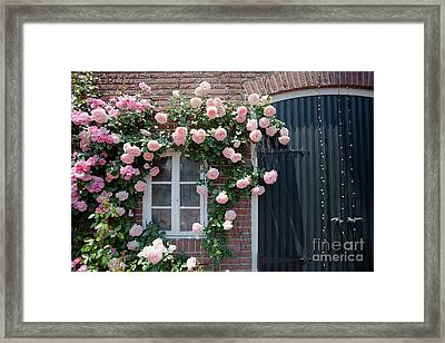 Surrounded By Roses Framed Print