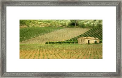 Surrounded By Vineyards Framed Print