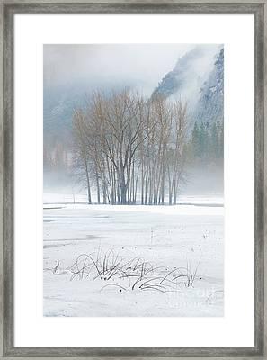 Surrounded Framed Print