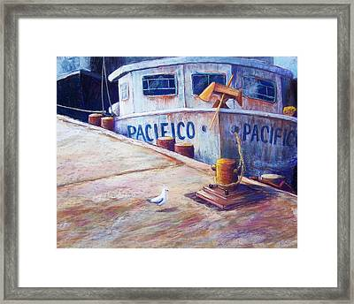 Surveying The Fleet Framed Print by Candy Mayer