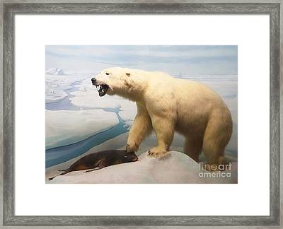 Survival Of The Fittest Framed Print by Cindy Manero