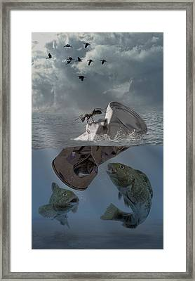 Survival Of The Fittest Framed Print by Solomon Barroa
