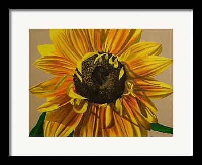 Shading On Flowers Framed Prints