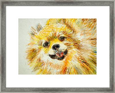 Sushi Framed Print by Lessandra Grimley