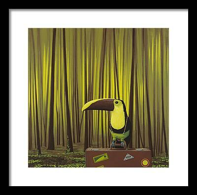 Toucan Framed Prints