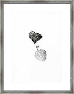 Suspense Framed Print by Bella Larsson