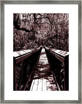Suspension Bridge Framed Print by Bob Johnson
