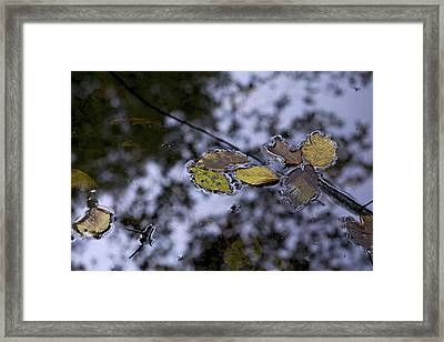 Suspension Framed Print by Jane Eleanor Nicholas