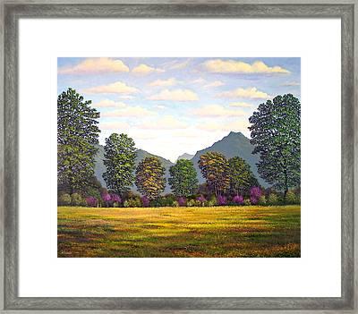 Sutter Buttes In Springtime Framed Print by Frank Wilson