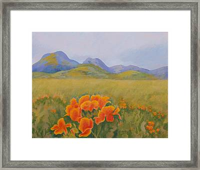 Sutter Buttes With California Poppies Framed Print