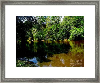 Suwannee River Framed Print by Greg Patzer