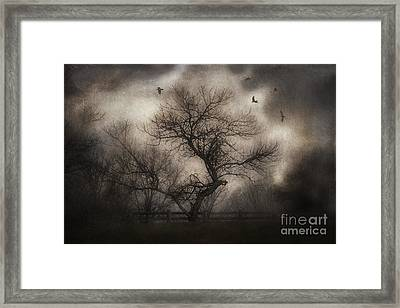 Svetlana's Tree Framed Print by Spokenin RED