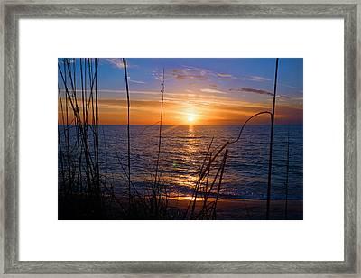 Sw Florida Sunset Framed Print