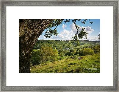 Swaledale Views Framed Print by Nichola Denny