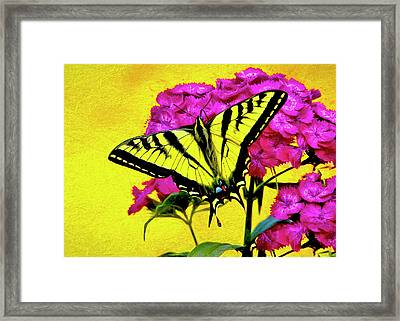 Framed Print featuring the digital art Swallow Tail Feeding by James Steele